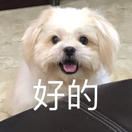 beckjiang的独家号 - 独家号