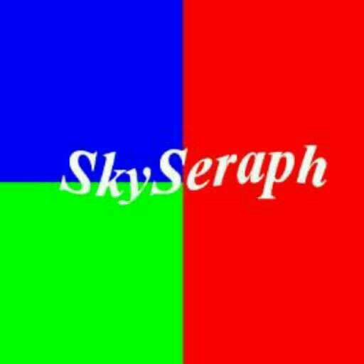 SkySeraph专栏 - 独家号