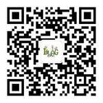 zhisheng - 独家号