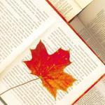 Poetry's Blog - 独家号