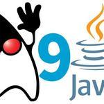 Java领域佼佼者 - 独家号